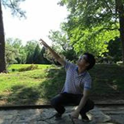 Eric Yu 17's avatar