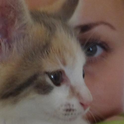 Joana Lachezaroff's avatar