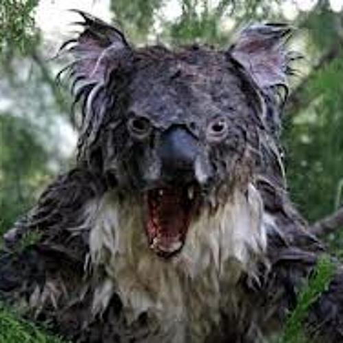 Koalagressive's avatar