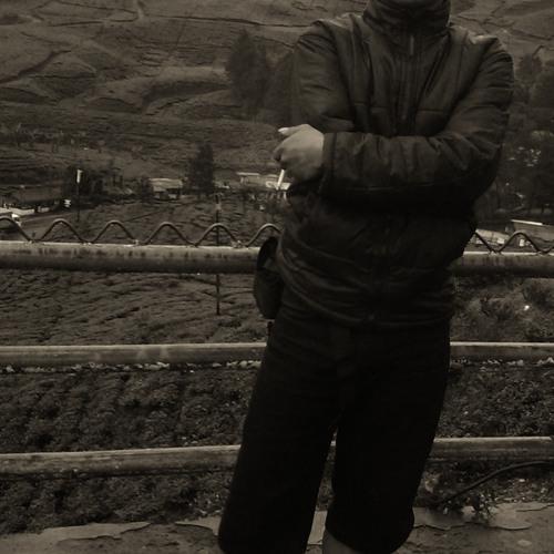 gemfoork23's avatar