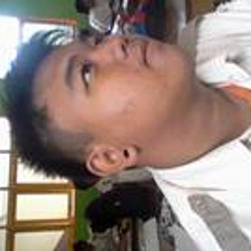 Aris Pratomo Putra's avatar