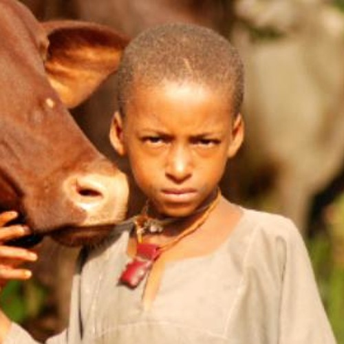 Zone Fulbe's avatar