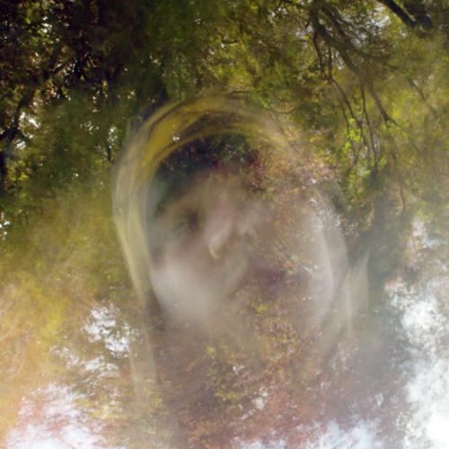 radikalis vertikalis's avatar