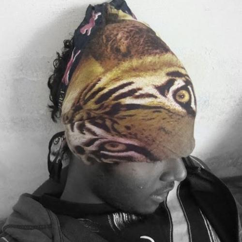 Ibrahim Aslam's avatar