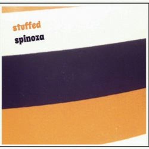 Stuffed Spinoza's avatar