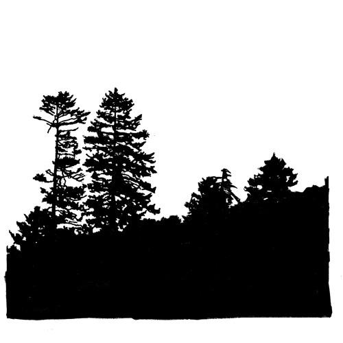 Fort Jams's avatar