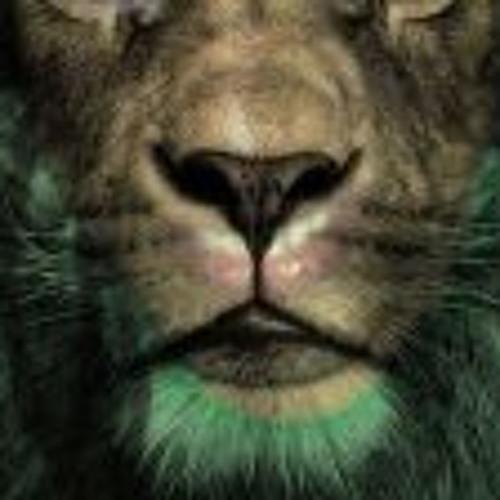 Leo Mesen's avatar