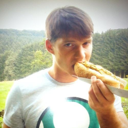 Hendrik Laineg's avatar