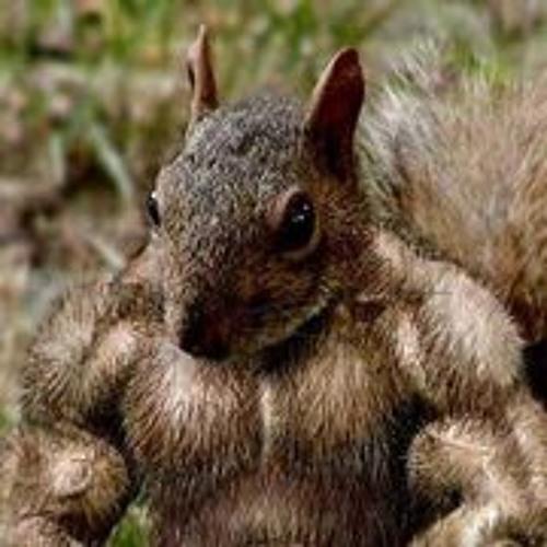 Hunter Slagle's avatar