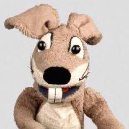 drhace's avatar