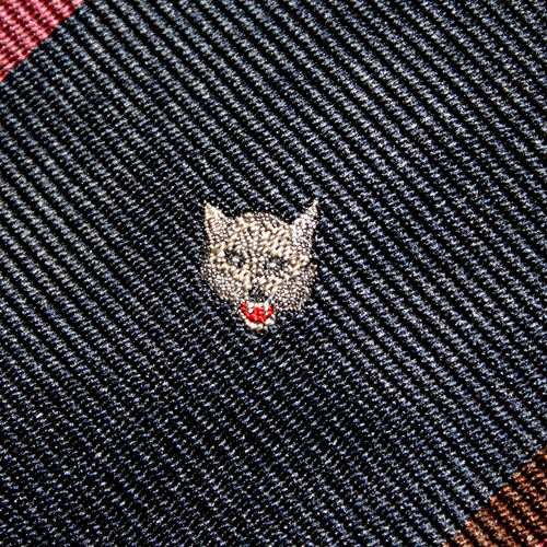 wolf cat's avatar