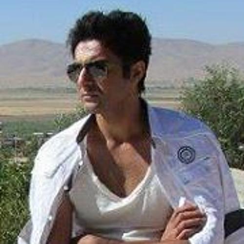 Hamed Karimzadegan's avatar