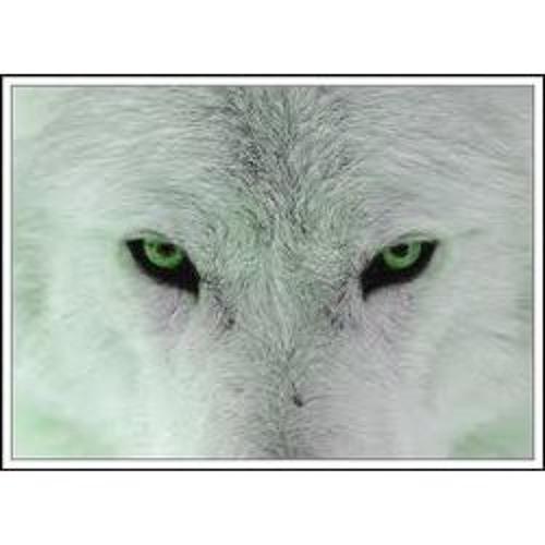 Loveswolvesforever's avatar