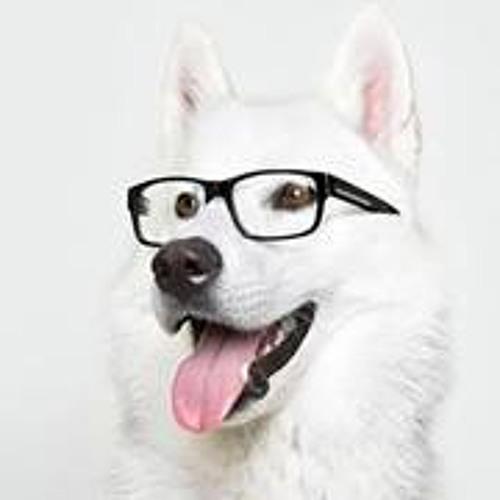 Brandon Le 19's avatar