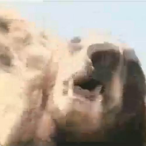 BIG MENACE's avatar