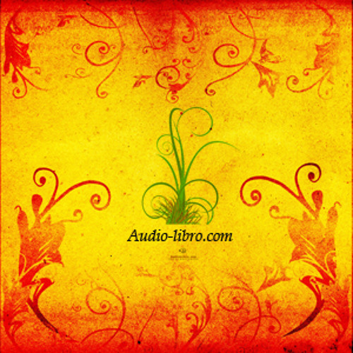 audio-libro's avatar