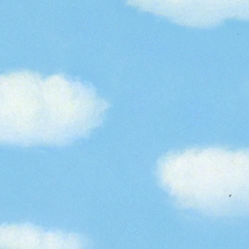 VELOCITY BIRD's avatar