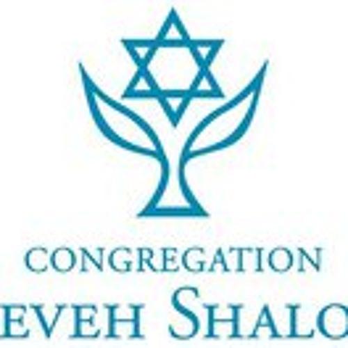 Neveh Shalom 1's avatar