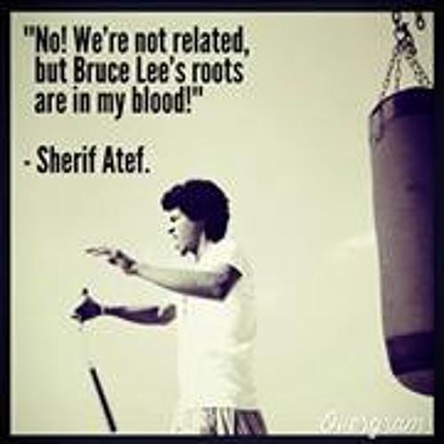 Sherief Atef's avatar