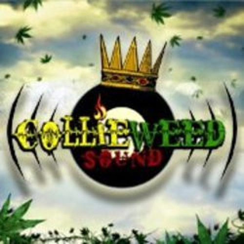 Collie Weed Barcelona's avatar
