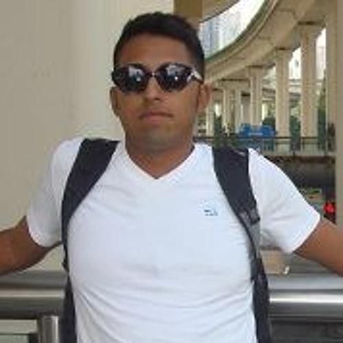 Soroush Haghsefat's avatar