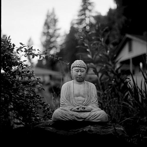 Buddha River's avatar