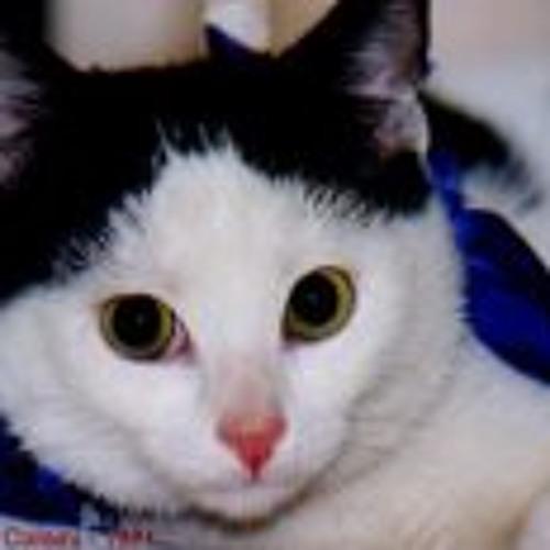 Gustavo Saint Cloud's avatar