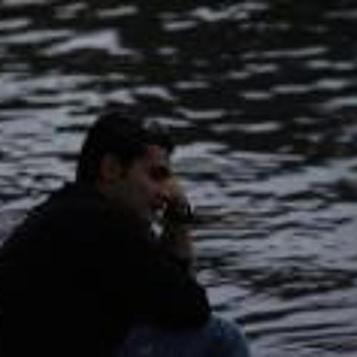 Mehrdad Bakhshi 1's avatar
