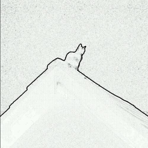 Seen From Terrace's avatar