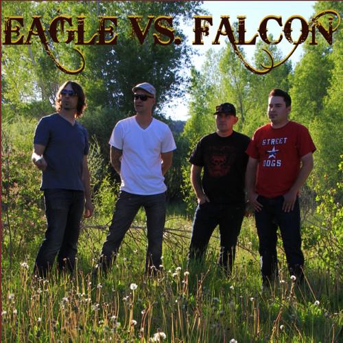 Eagle vs. Falcon's avatar
