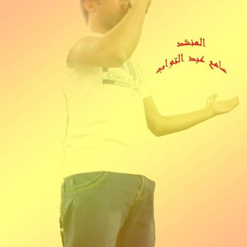 Sameh Abdeltowab's avatar