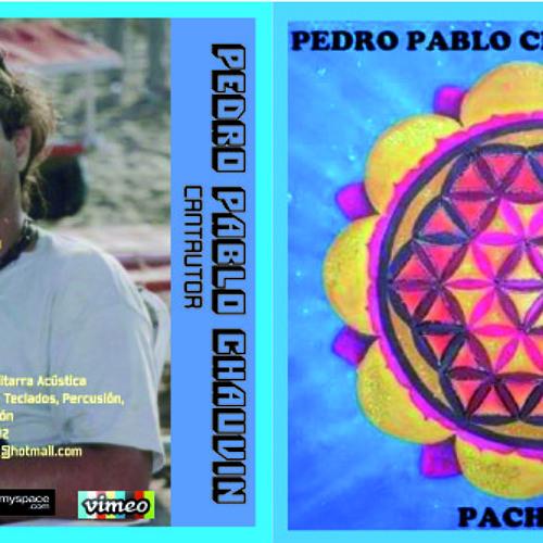 Pedro Chaud-Vin's avatar