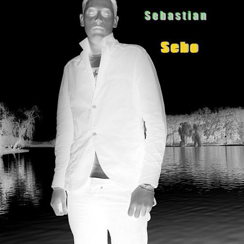 Sebastian Sebo.'s avatar