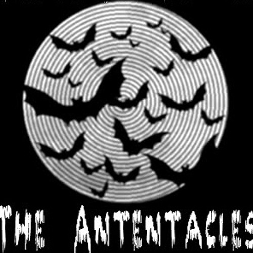 The Antentacles's avatar
