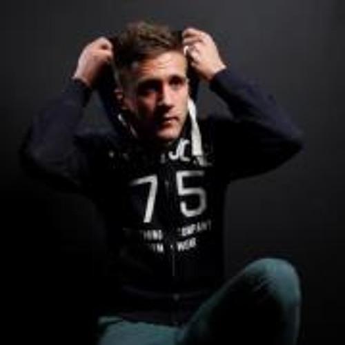 Dennis Silvrants's avatar