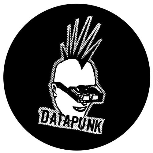 Datapunk (Official)'s avatar
