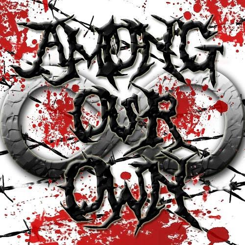 Among Our Own - The Phoenix