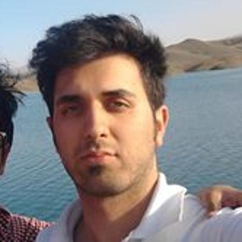 Hossein Abili's avatar