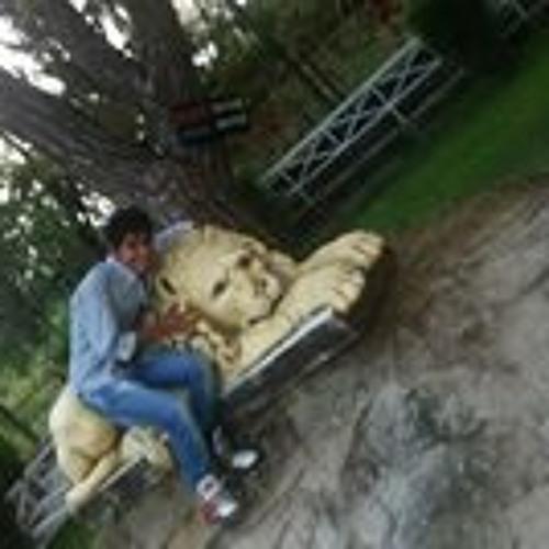 Pulkit Chopra 1's avatar