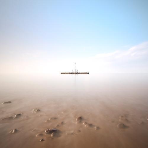 experiments in silence's avatar