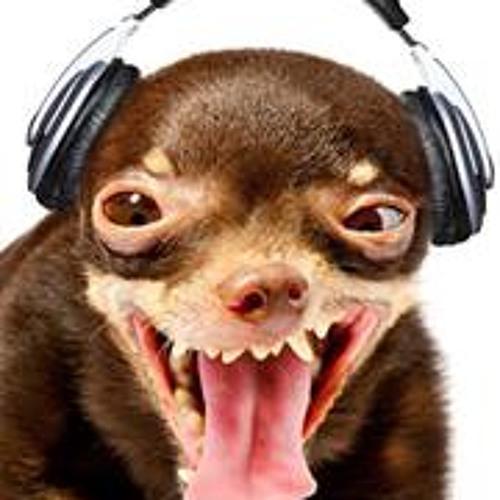 Zoo Rock's avatar