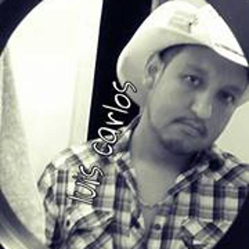 Luis Carlos Castor's avatar
