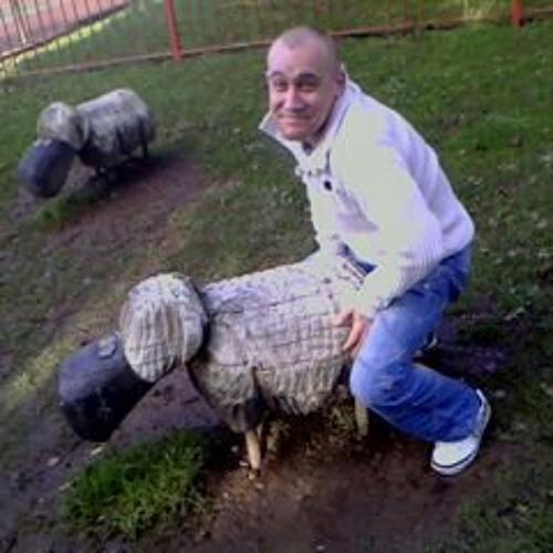 sheep_003's avatar