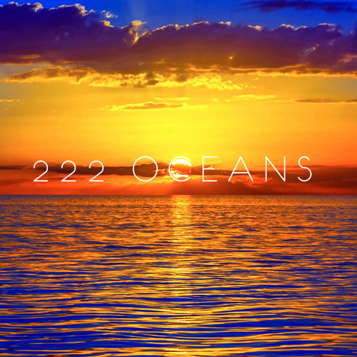 222 Oceans's avatar