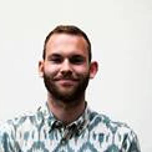 WietzeGelmers's avatar