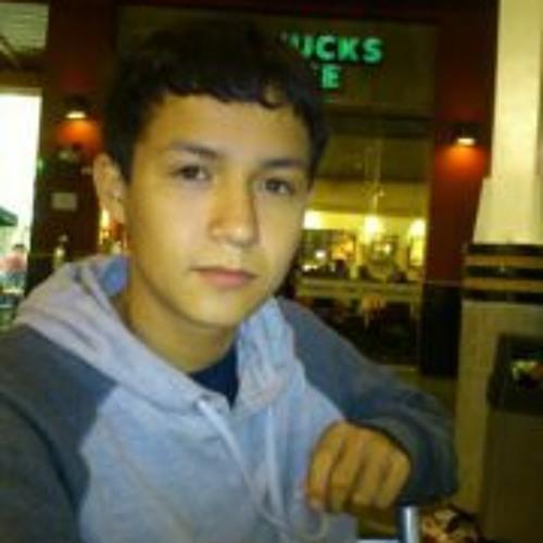 Luis Perales Torres's avatar