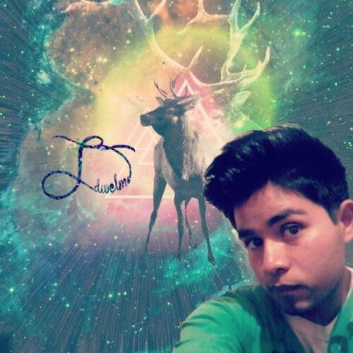 dwelms-beat's avatar