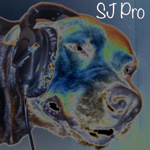SJ Pro Beats's avatar