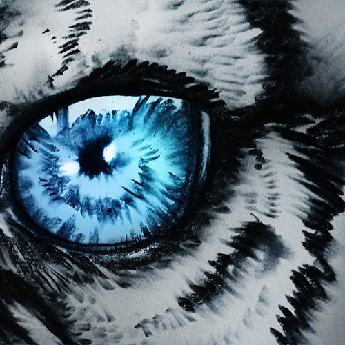 CalmTiger's avatar