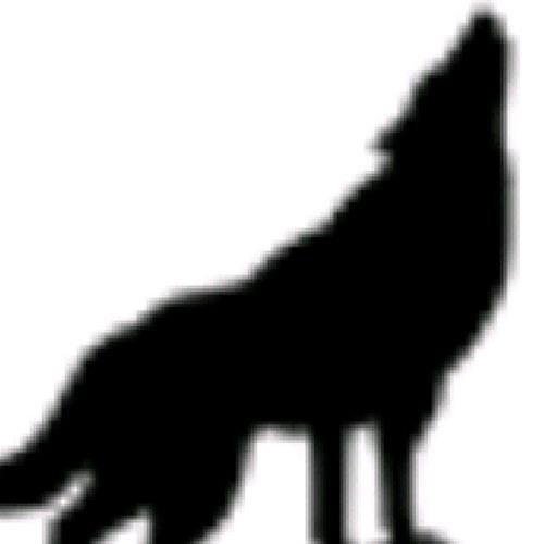 DJ Wolf Blu Sky's avatar